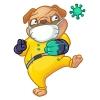 Koronavírus u domácich miláčikov